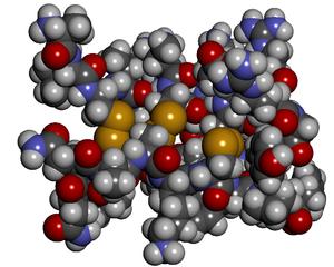 Cobatoxin - Space-filling diagram of cobatoxin 1