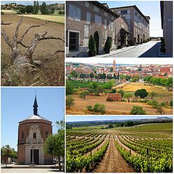 Images of Rueda, a typical village of the province of Valladolid.