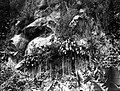 Collectie Nationaal Museum van Wereldculturen TM-10021135 Een steile rotswand met vegetatie Saba -Nederlandse Antillen fotograaf niet bekend.jpg