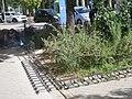 Comienza la segunda fase de rehabilitación de las zonas verdes del Parque de las Avenidas 02.jpg
