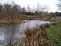 Copthorne Park - geograph.org.uk - 146264.jpg