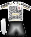 Corinthians - Timão é a sua cara uniforme (2009-2010).png