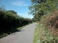 Country Lane - geograph.org.uk - 36542.jpg