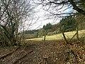 Countryside near Rhandirmwyn - geograph.org.uk - 1134364.jpg