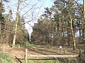 Cranwich Heath looking east - geograph.org.uk - 397612.jpg