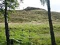 Creagan na Leacainn - geograph.org.uk - 1437028.jpg