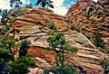Cross-bedded sandstone, Zion Park.jpeg