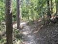Crowleys Ridge State Park Dancing Rabbit Trail Paragould AR 06.jpg