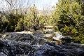 Cruzando el rio - panoramio.jpg