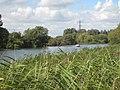 Culham Reach - geograph.org.uk - 940830.jpg