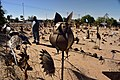 Curios, Pofadder, Northern Cape, South Africa (20533723372).jpg