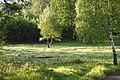 Czerniawa Zdrój - panoramio (12).jpg