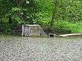 DSC02262 Teich zur Aufzucht autochthoner Fischarten,,,.jpg