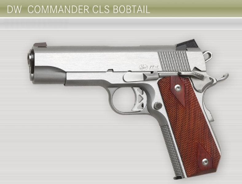 So did I mention I don't like 1911's? - Page 4