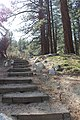 Davis Creek Park - panoramio (25).jpg