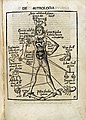 De Astrologia. Astrological Man; 1503 Wellcome L0012390.jpg
