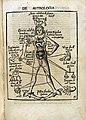 De Astrologia. Astrological Man; 1503 Wellcome L0012390.jpg