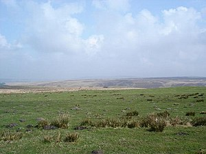 Lordship of Denbigh - Common land on Denbigh Moors
