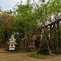 Dhara Devi gardens.jpg
