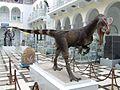 Dilofozaur PGI.jpg
