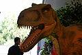 Dinosaurs at the zoo (1486624341).jpg