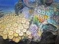 Diorama of a Devonian seafloor - corals, trilobites, gastropods, crinoid (43838402920).jpg