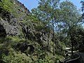 Divoká Šárka - panoramio (29).jpg
