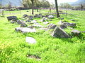 Dodona-Greece-April-2008-025.JPG