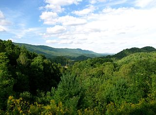 Cherokee National Forest United States National Forest in Tennessee and North Carolina