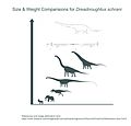 Dreadnoughtus Mass Comparison (Metric).jpg