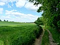 Droga przy brzegu jeziora Sępoleńskiego. - panoramio (2).jpg