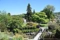 Dunedin Botanic Garden 01.jpg