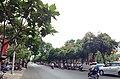 Duong Le lai q1 tphcm - panoramio.jpg