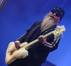 Dusty Hill ZZ Top BBK Live 2008 I.jpg