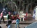 Dwaraka and around - during Dwaraka DWARASPDB 2015 (230).jpg