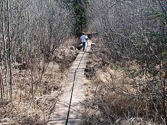 Eagle Mountain (Minnesota) - Image: Eaglemtn aprilhike