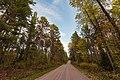 Echo Trail - Ely-Buyck Road, Minnesota (37435716092).jpg