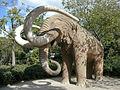 Elephant in Parc de la Ciutadella (2926713937).jpg