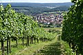Ellmendingen Blick durch die Weinberge im Sommer - panoramio.jpg