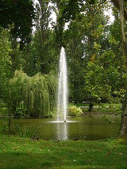 L'étang du jardin des plantes et son geyser