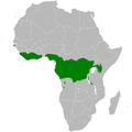 Eurillas latirostris distribution map.png