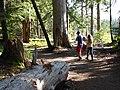 Evan and Adrie Redman hiking Carter Falls trail in July, 2014. (b68f3f4236344ff98d690683967d716c).JPG