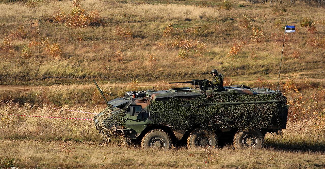 Страны Запада должны предоставить Украине оборонительное вооружение, - президент Эстонии - Цензор.НЕТ 4554