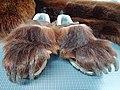 Füße eines Bärenkostüms (1).jpg