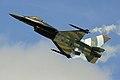 F16 - RIAT 2005 (2882541155).jpg