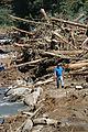FEMA - 11170 - Photograph by Leif Skoogfors taken on 09-19-2004 in North Carolina.jpg