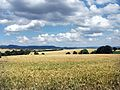 FFH-Gebiet Meißner Vorland, Gebietsnummer 4725-306. Blick aus der Gemarkung von Gut Mönchhof zur Hessischen Schweiz (WDPA ID 163663).jpg