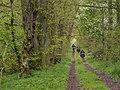 Fahrradtour durch den Biosphärenreservat Schorfheide-Chorin.jpg