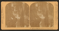 Fairyland, Magnolia Cemetery, Charleston, S.C, from Robert N. Dennis collection of stereoscopic views 2.png