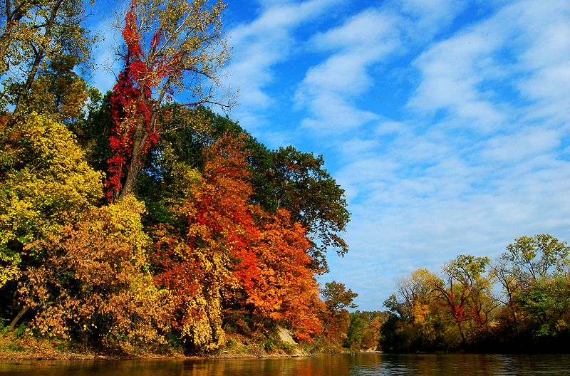 File:Fall foliage on the Black River.jpg